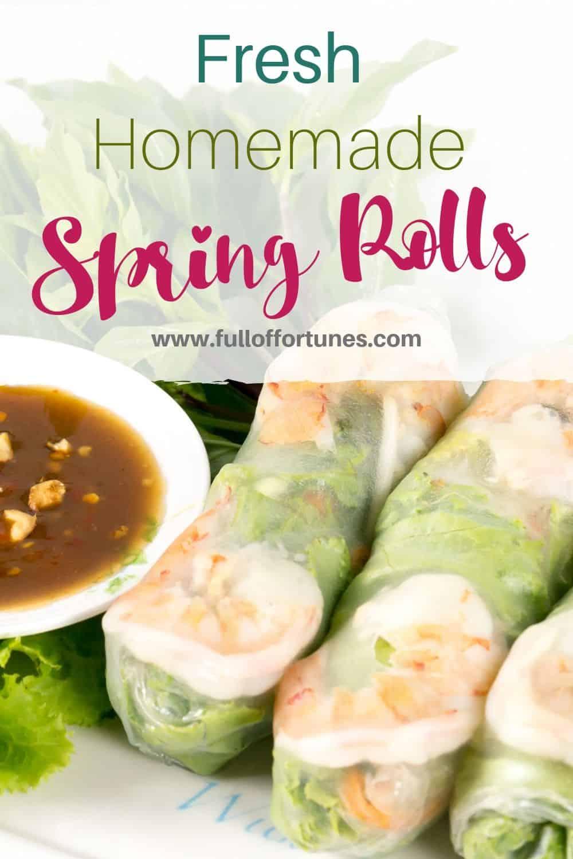 Fresh Homemade Vietnamese Spring Roll with Hoisin Peanut Sauce