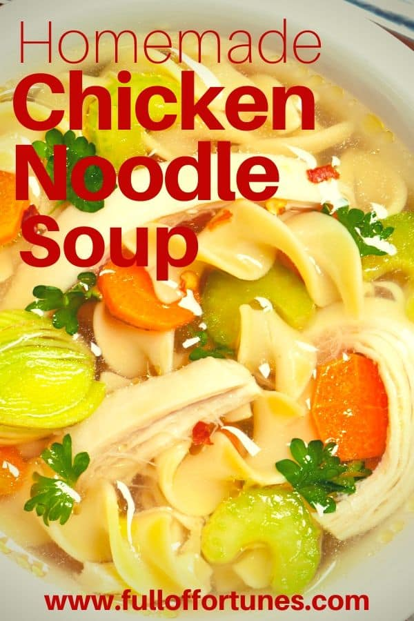 Chicken Noodle Soup with carrots, celery, parsley, & red pepper flakes